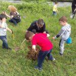 Деца засаждат гора