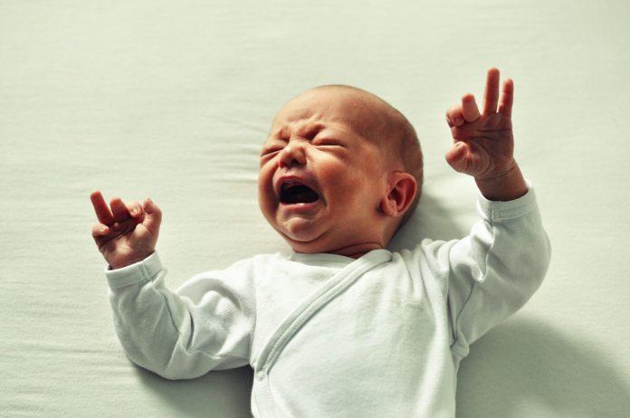Монтана на чело по раждаемост в северозапада
