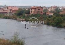"""Ентусиаст рибар в студените води на река """"Огоста"""""""