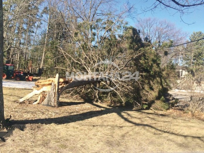 Ураганен вятър удари Монтана