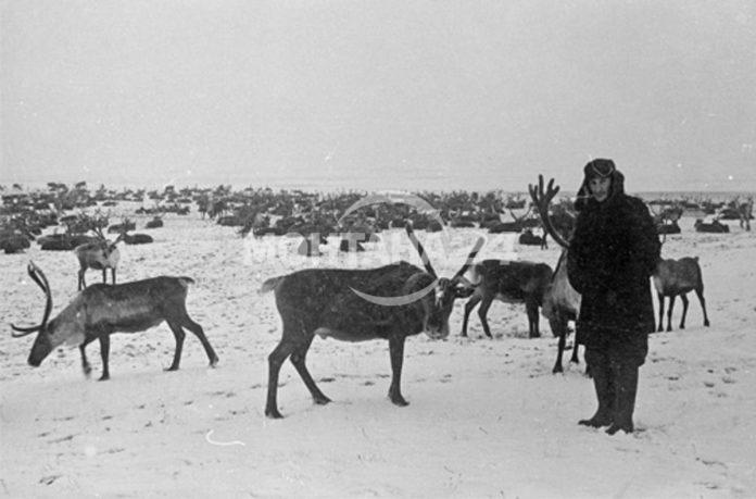 Радичков между Сибир и Швеция