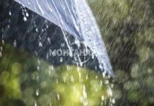 Вадете чадърите! Очаква ни дъждовен ден