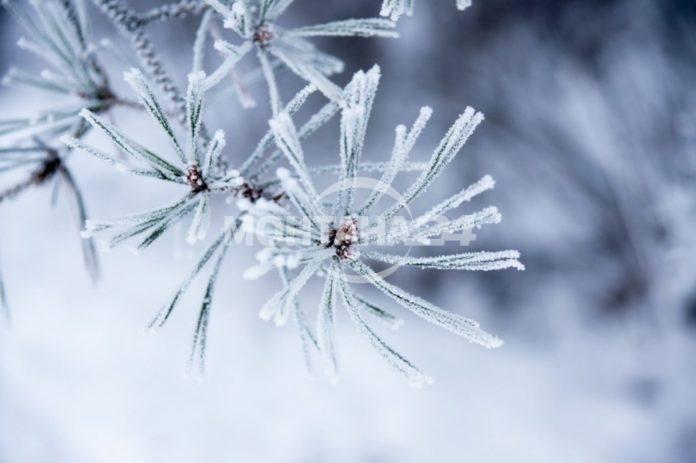 Времето през декември! Ще има ли сняг за Коледа?