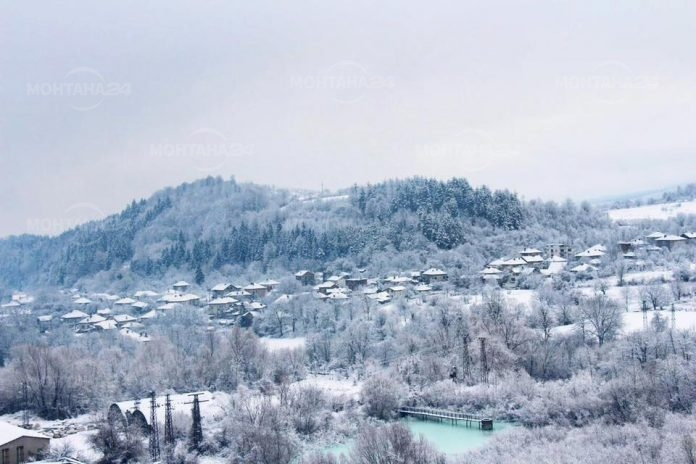 Снежна Берковица