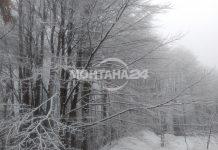 Жълт код за валежи от сняг в северозапада