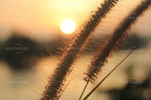 Със слънце започва новата седмица