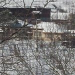 Щъркел долетя в Николово