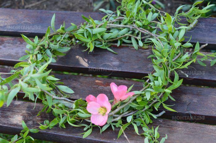 Не купувайте цветя и билки от продавачи без разрешително