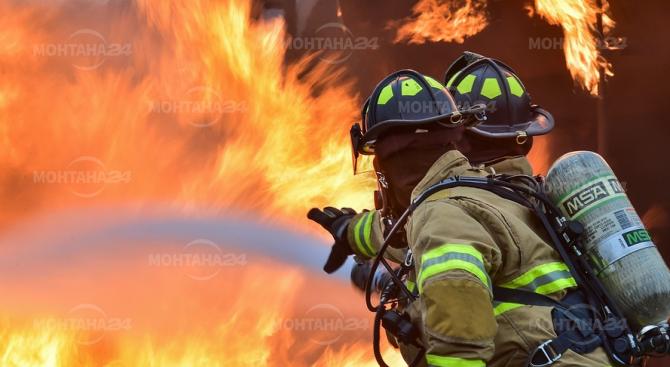 Спасиха 15 животни при голям пожар във Вършец
