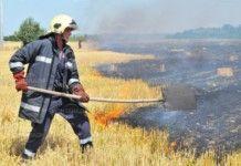 Две деца са запалили пшеницата край Якимово
