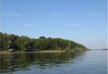 остров Ибиша