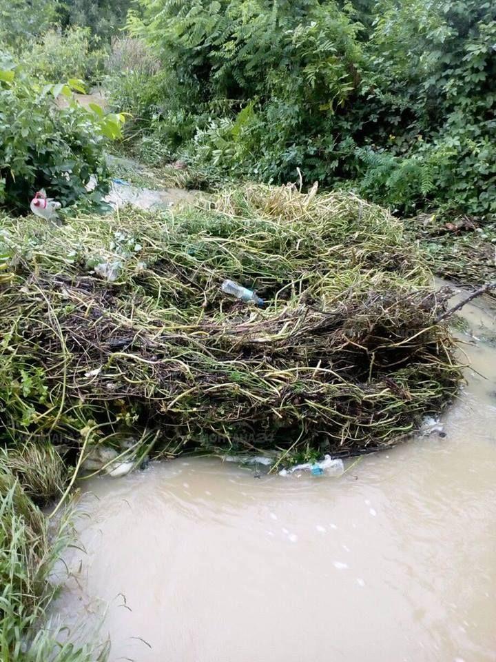 Проливен дъжд за около час наводни няколко двора в с. Боровци. Местните разказаха, че реката около центъра е преляла и е проникнала в имотите на хората