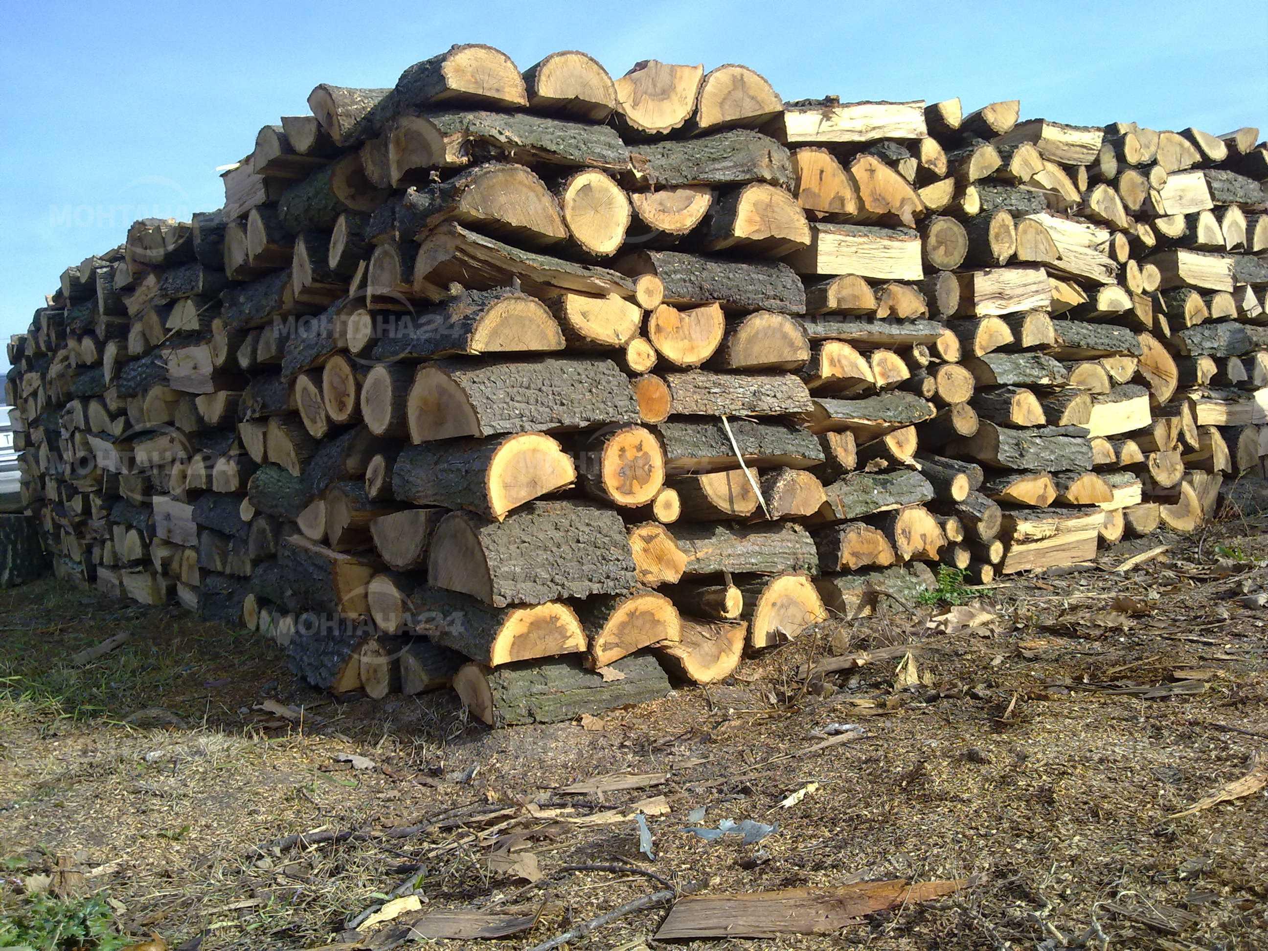 Преди зимата! Дървата за огрев в Монтана се намират трудно