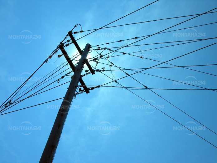 20 щъркели умряха от токов удар край Якимово! Кмет ще гледа малко щъркелче