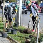 """В рамките на инициативата We Do Green """"ЧЕЗ Електро България"""" АД организира и провежда събития, свързани с грижата за околната среда и енергийната ефективност."""