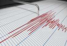 Силно земетресение събуди Северозапада