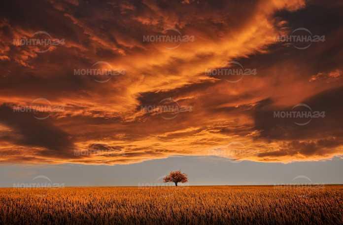 Облаци ще помрачат времето в събота