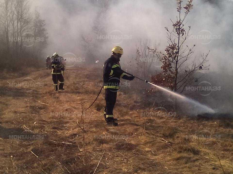 Пожарникари от България и Сърбия се учиха заедно са гасят горски пожари