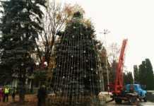 Работници украсяват Коледната елха в Монтана