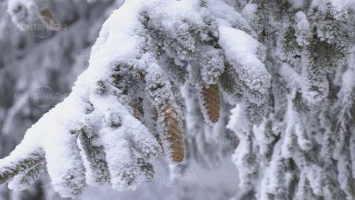 Жълт код за сняг в Монтанско