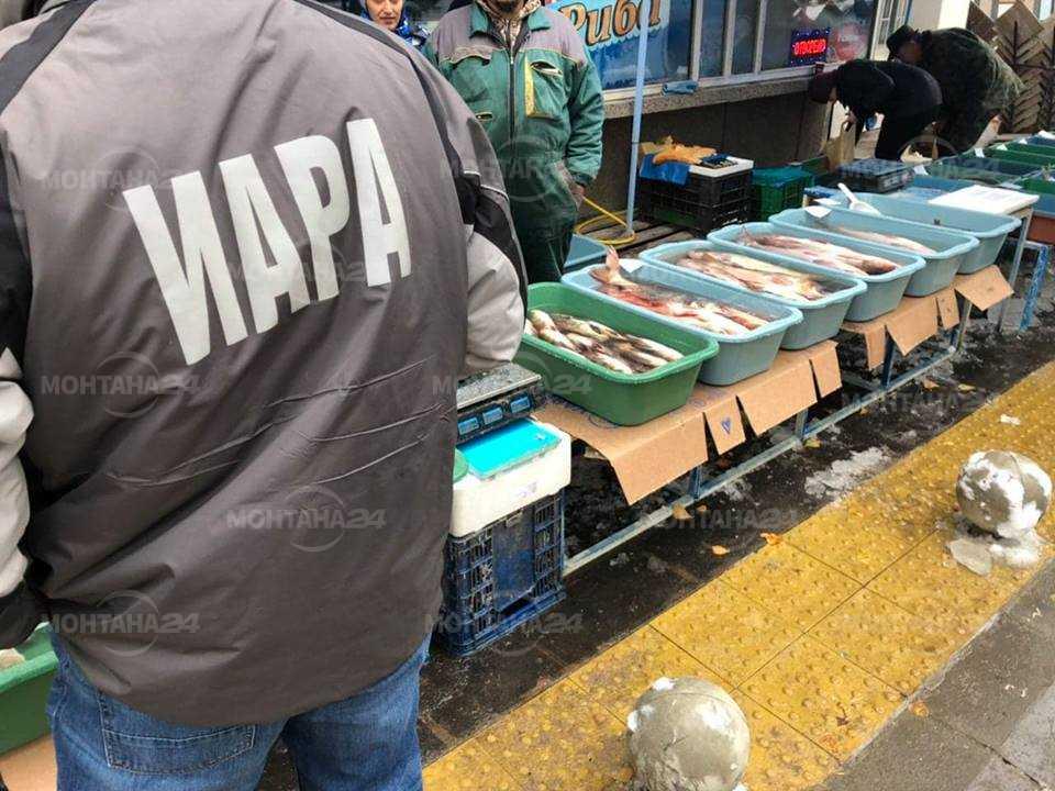 Инспектори от ИАРА проверяват рибата в Монтана