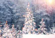 Времето в Монтана! Ще попречи ли мъглата на Дядо Коледа