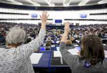 Следващите избори за Европейски парламент ще се проведат между 23-26май 2019г., като право на глас има повече от 500 милиона европейци по целия свят.