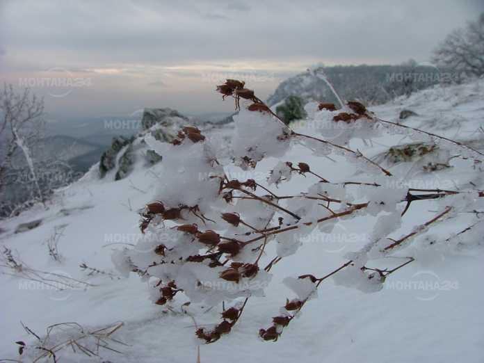 Затвориха пътя Студено буче и Доктор Йосифово заради снега
