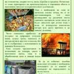 Раздават брошури за пожарната безопасност при пролетното почистване