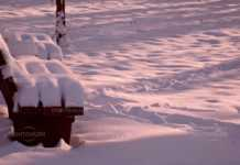 Жълт код за сняг, поледици, силен вяър и ниски температури