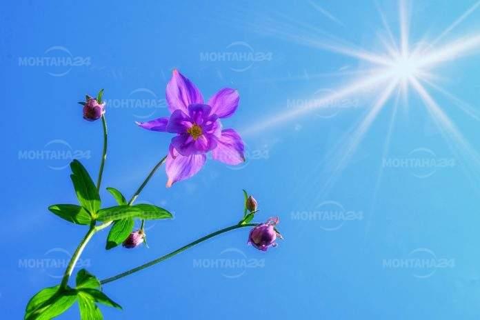 Днес ни очаква слънчево и горещо време