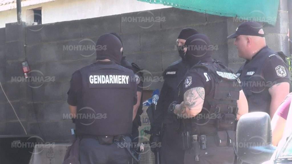 ГДБОП удари лихвари в Берковица