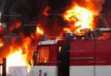 900 овощни дръвчета изгоряха край Василовци