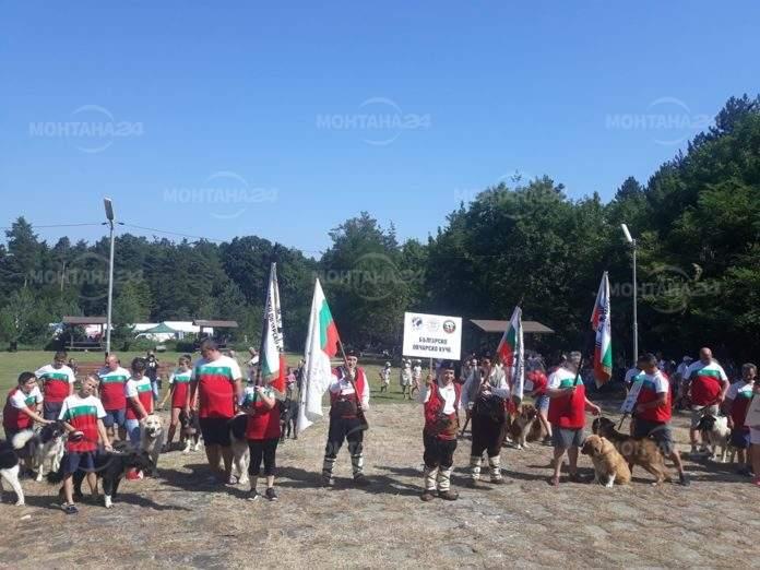 Иванчова поляна се оказа тясна за стотиците посетители на празника