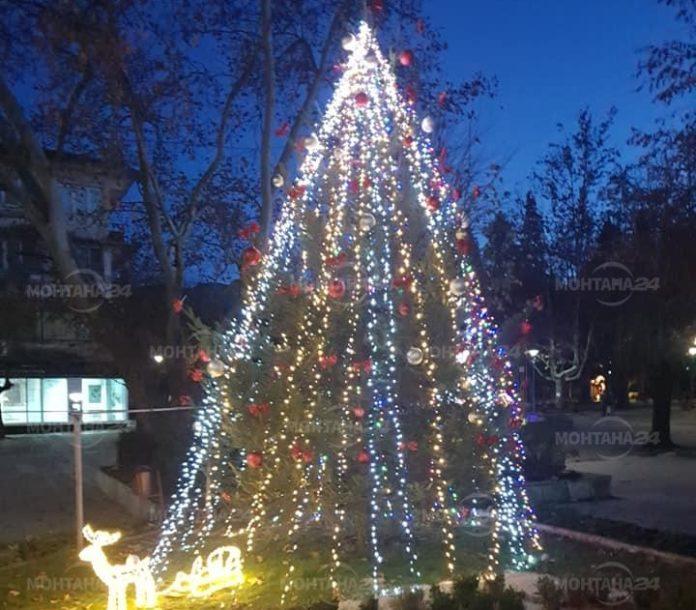 Коледната украса грейна във Вършец