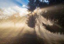 Мъгливо и влажно време в сряда