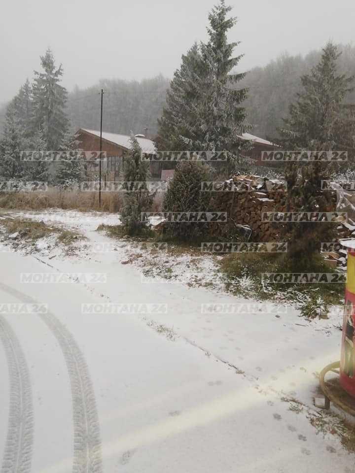 Първи сняг заваля на прохода Петрохан